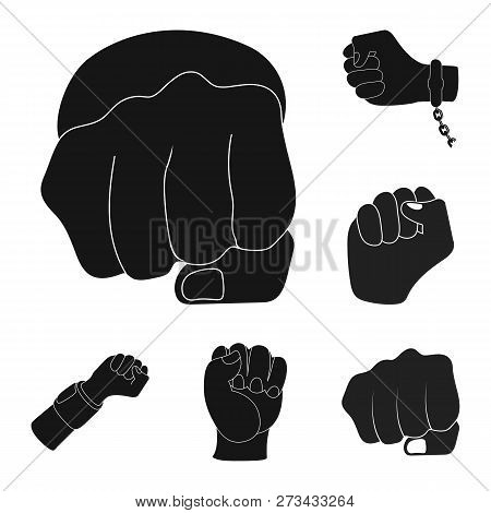 Vector Illustration Of Fist And Punch Icon. Collection Of Fist And Hand Stock Symbol For Web.