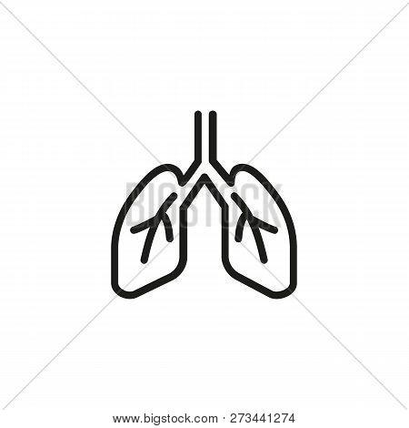 Trachea Images Illustrations Vectors Free