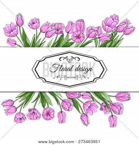 Floral Spring Templates Of  Hand Drawn Pink Tulips. Elements For Romantic And Easter Design, Announc