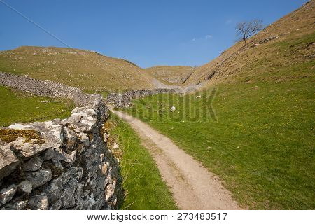 Path And Dry Stone Wall In The Yorkshire Dales In England