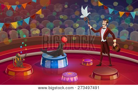 Circus Arena, Magician Conjurer Juggler Or Animal Handler With Dove On Stick, Trained Monkey And Sea