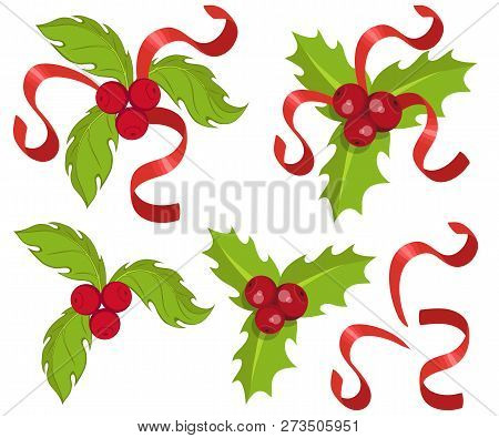 Christmas Holly Cartoon.Christmas Holly Set Vector Photo Free Trial Bigstock