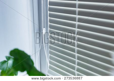 Blinds On The Windows In A Bright Room. Interior Apartment. Modern Curtains For The Apartment.