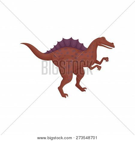 Dark Red Spinosaurus Standing Isolated On White Background. Dinosaur With Spotted Body And Long Tail