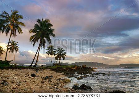 Sunrise In Tropical Nature Landscape. Palm Trees Silhouettes Landscape. Ocean Nature In Sunrise. Nat