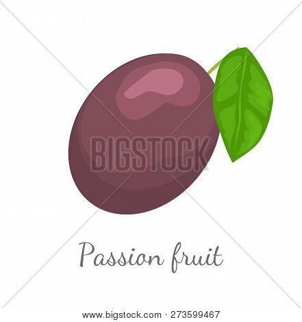 Passionfruit With Leaf, Exotic Juicy Fruit Vector Isolated. Maracuja, Parcha, Grenadille Or Fruits D