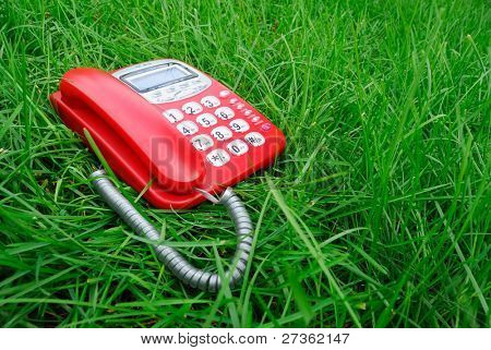 red phone on green grass