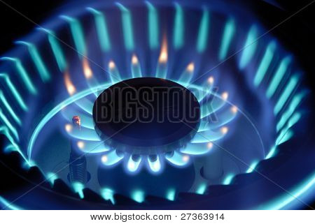 Close Up of Blue flames from Gas Stove