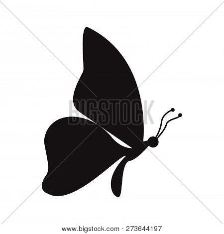 Butterfly Icon Isolated On White Background. Butterfly Icon In Trendy Design Style. Butterfly Vector
