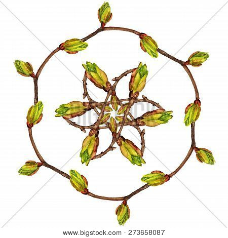 Round Frame With Watercolor Twig With Buds On White Background. Spring Concept.