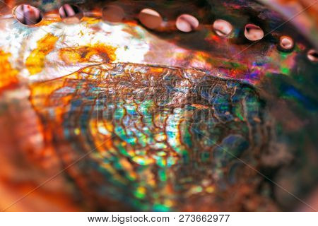 Close-up Of Mother Of Pearl. Multicolor Texture Of Seashell, Multicolor Nacre Texture. Colored Nacre