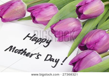 Mother's Day Concept-- Purple tulips with card on white background