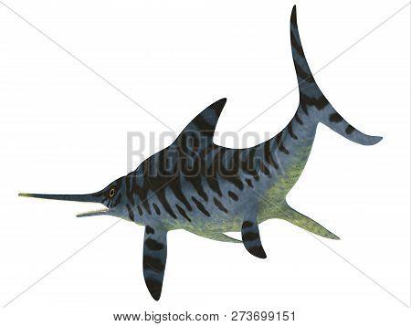 Eurhinosaurus Reptile Tail 3d Illustration - Eurhinosaurus Was A Carnivorous Ichthyosaur Reptile Tha