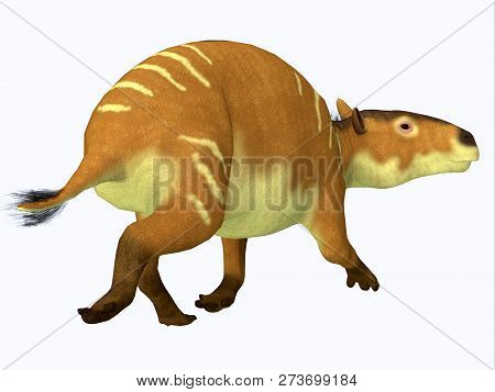 Eurohippus Horse Tail 3d Illustration - Eurohippus Was An Early Horse That Lived In The Middle Eocen