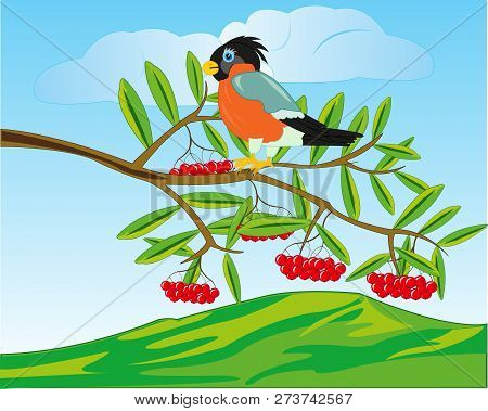 Bird On Branch Of Rowanberry And Mountains On Back Plan