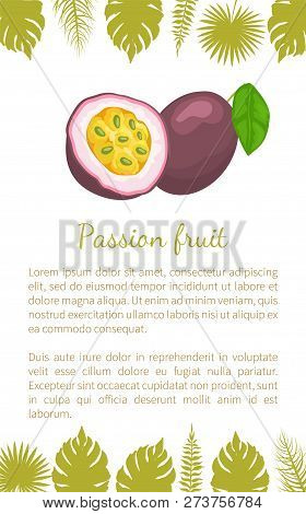 Passionfruit With Leaf, Exotic Juicy Fruit Vector Poster Text And Leaves. Maracuja, Parcha, Grenadil