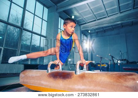 The Sportsman Performing Difficult Gymnastic Exercise At Gym. The Sport, Exercise, Gymnast, Health,