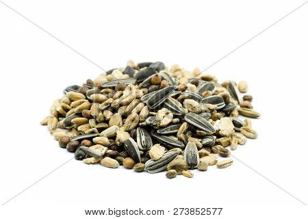 Birdseed Feed Heap Isolated On White Background