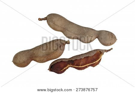 Tamarind (tamarindus Indica) Pod-like Fruit As Off The Tamarind Tree, A Leguminous Tree Native To Tr