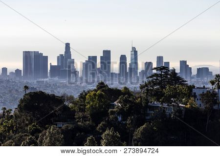 Morning view of tree covered hilltop and downtown Los Angeles from popular Griffith Park near Hollywood California.