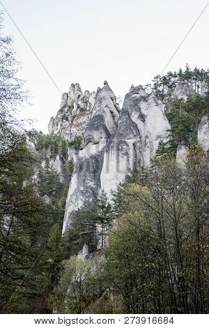 White Coloured Sandstone Rocks Of Sulovske Skaly Mountains Above Sulov Village In Slovakia With Tree