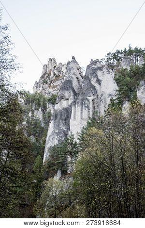 White Coloured Sandstone Rocks Of Sulovske Skaly Mountains Above Sulov Village In Slovakia With Tree
