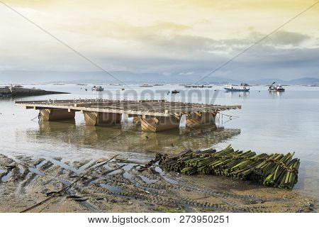 New mussel bed, structure where mussels are bred. Marine landscape. Rias baixas Galicia Spain poster