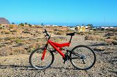 Modern Red Full Suspension Mountain Bike MTB Bicycle poster