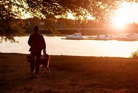 The Guy Walking His Dog At Sunset
