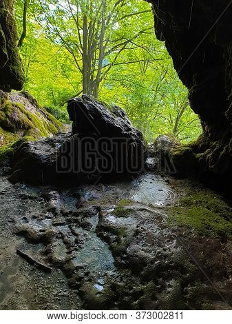 Forest Seen From Cave Entrance At Pietrele Vorbitoare Waterfalls, Lush Green Vegetation Growing On L
