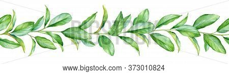 Seamless Pattern With Watercolor Twigs With Green Leaves Isolated On White Background.