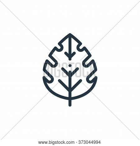 leaf icon isolated on white background from  collection. leaf icon trendy and modern leaf symbol for