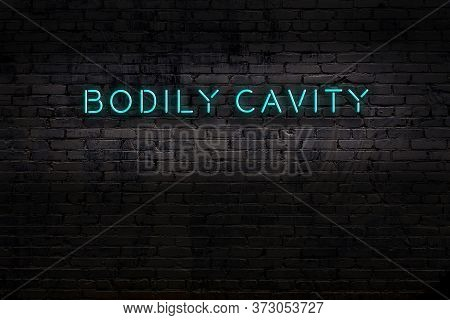 Neon Sign On Brick Wall At Night. Inscription Bodily Cavity