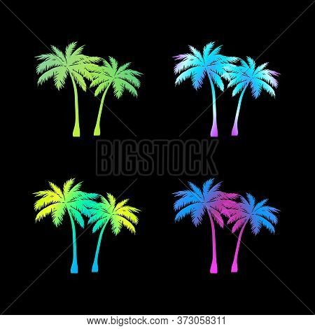 A Bent Palm Tree Width Coconuts Isolated On White. Coconuts On The Ground. Summer Team.