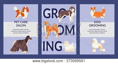 Set Of Cards And Tags Templates Vector Flat Illustration. Flyers For Pet Care Salon And Pet Shops. D