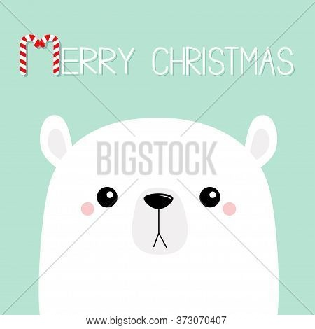 Merry Christmas. Candycane. Polar White Bear Cub Sad Face. Happy New Year. Cute Cartoon Baby Charact