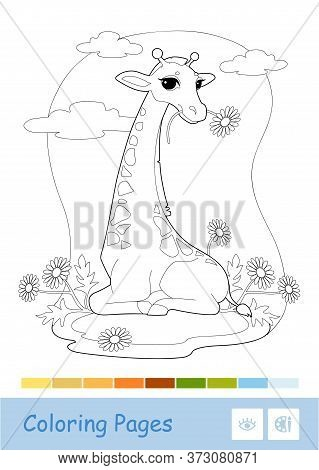 Colorless Contour Image Of Eating A Flower Giraffe In The Woodland Isolated On White. Wild Animals,
