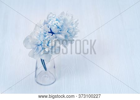 Beautiful Blue Peony Flower In Vase On Blurred Background. Copy Space For Your Text. Pastel Colored