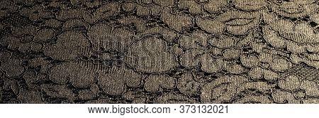 Black Lace Texture. Lace Background. Romantic Fabric.
