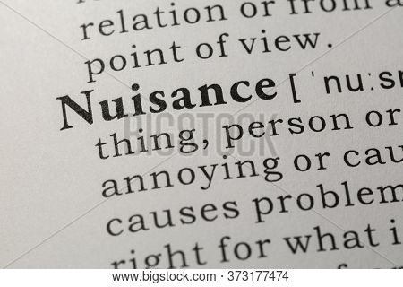Fake Dictionary, Dictionary Definition Of Word Nuisance.