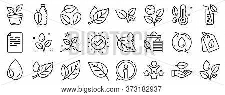 Mint Leaf, Growing Plants And Humidity Thermometer Icons. Plants Line Icons. Bottle With Mint Water,