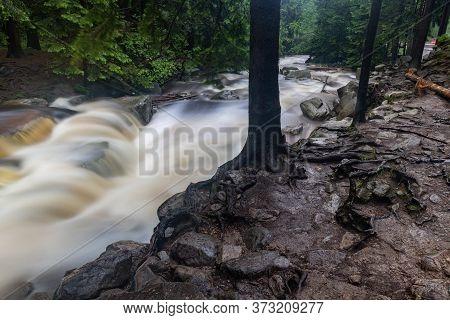 Mountain River Flowing In A Forest Area. Watercourse In Mountainous Terrain.