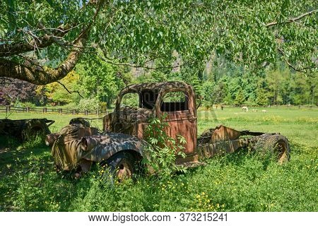 Old Abandoned Farm Truck. An Old Farm Truck In A Pasture.
