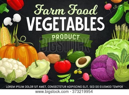 Farm Vegetables, Beans And Mushrooms Cartoon Vector Of Veggie Food. Tomato, Pepper And Cabbages, Rad