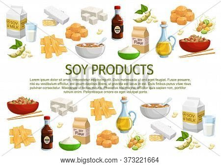 Soy And Soybean Products Vector Poster. Coagulated Soy Milk, Curd Skin, Flour Packet, Sauce And Oil