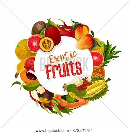 Exotic Tropical Fruits Round Vector Banner. Whole And Sliced Tamarillo, Mangosteen And Rambutan, Dur