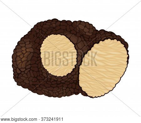Truffle With Cut Slice Showing White Flesh Vector Illustration