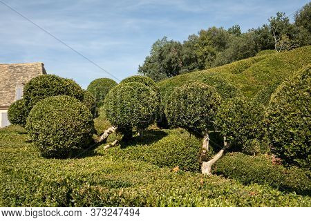 Dordogne, France - September 3, 2018:  Topiary In The Gardens Of The Jardins De Marqueyssac In The D