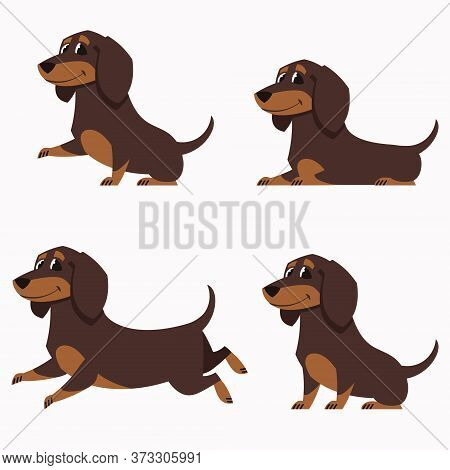 Dachshund In Different Poses. Set Of Cute Pets In Cartoon Style.