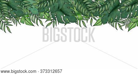 Tropical Banner Background With Exotic Green Leaves, Tropical Summer Decoration With Hand Drawn Trop